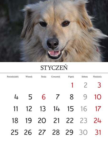 Kalendarz_Strona_03_Strona_02