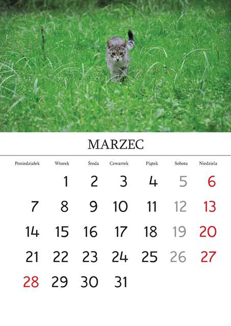Kalendarz_Strona_03_Strona_04