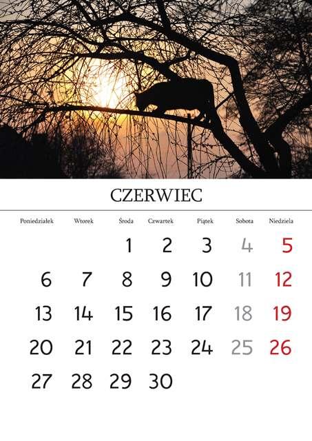 Kalendarz_Strona_03_Strona_07