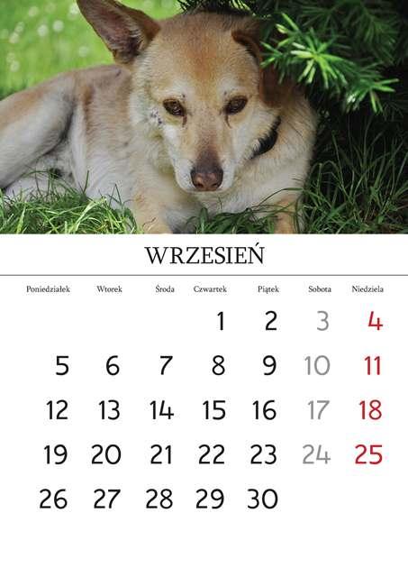 Kalendarz_Strona_03_Strona_10