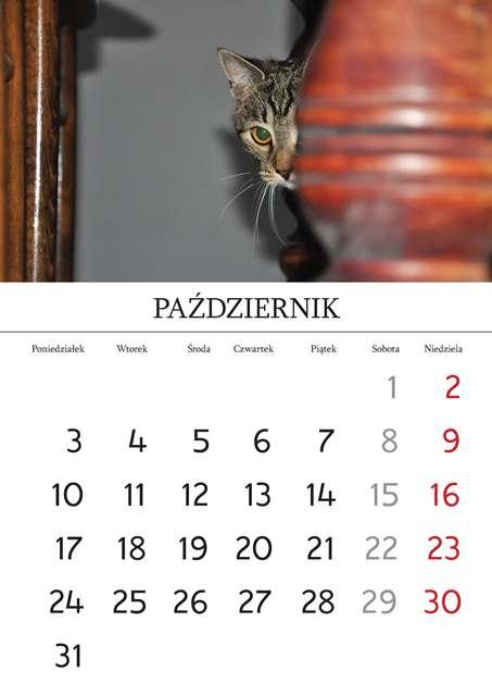 Kalendarz_Strona_03_Strona_11