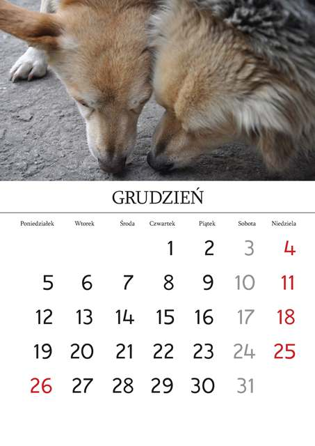 Kalendarz_Strona_03_Strona_13
